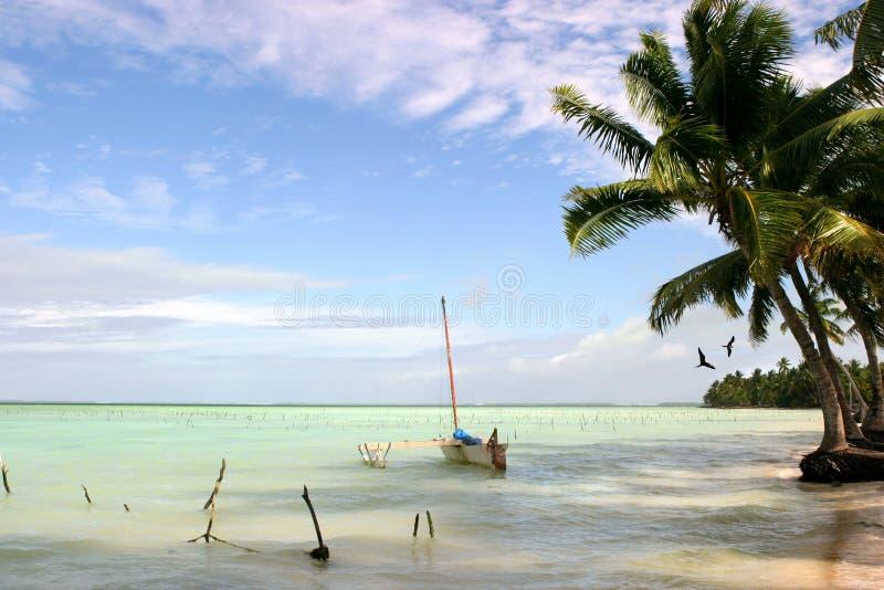 fanning wyspę. zdjęcie royalty free