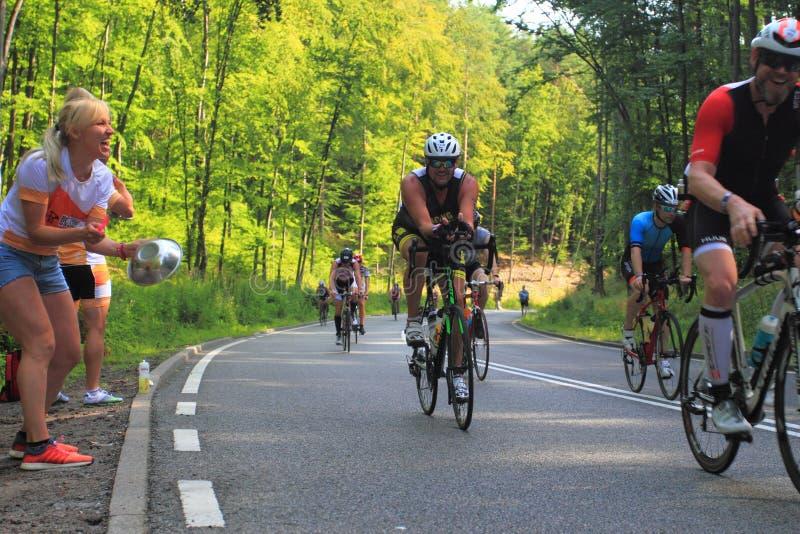 Fans, die Radfahrer auf Rennweg stützen stockbilder