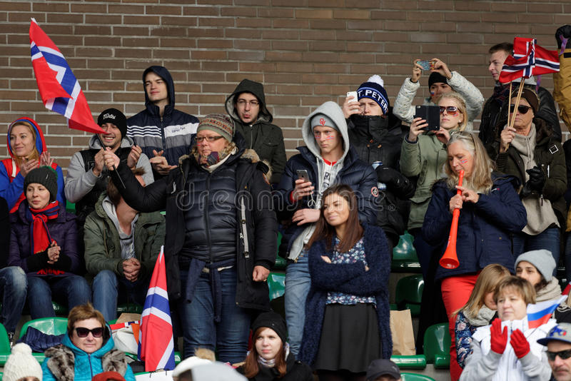 Fans norvégiennes images libres de droits