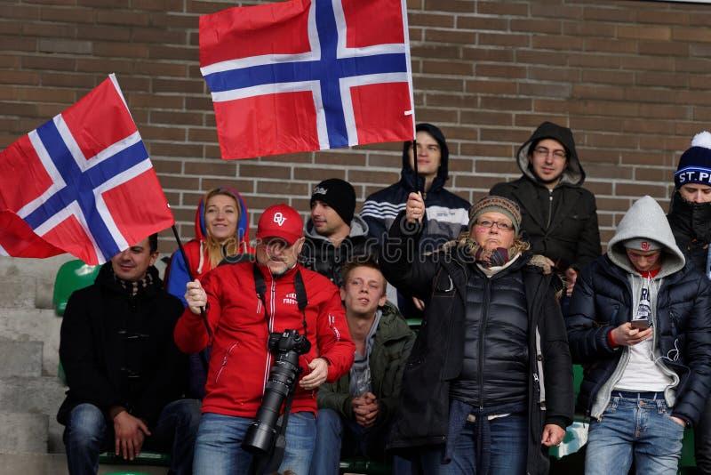 Fans norvégiennes image stock