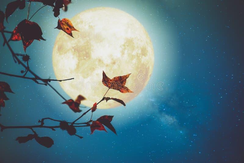 Fantasía hermosa del otoño imagen de archivo