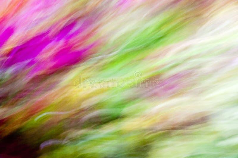 Fantas?a de colores foto de archivo libre de regalías