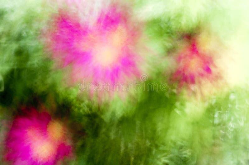 Fantas?a de colores fotos de archivo libres de regalías