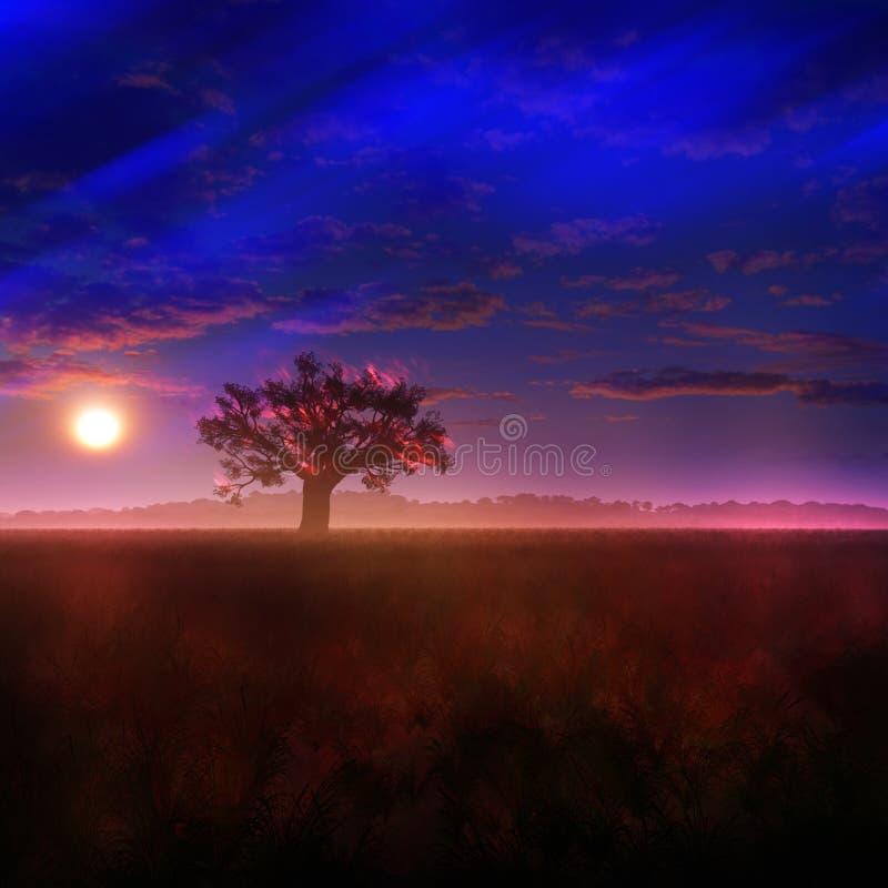 Fantasiängsolnedgång med att blekna morgonrodnad royaltyfri illustrationer
