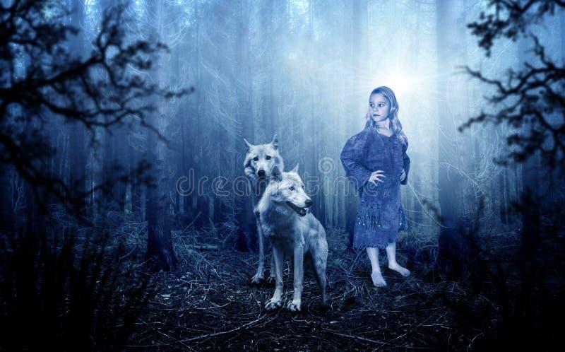 Fantasi Imagaintation, natur, varg, varger, ung flicka royaltyfri foto