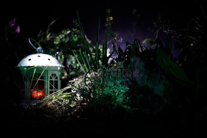 A fantasia decorou a foto Casa bonita pequena na grama com luz Casa velha na floresta na noite com lua Foco seletivo imagem de stock royalty free