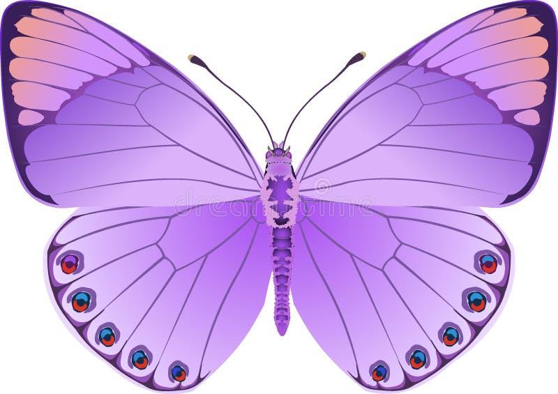 Fantasia del lillà della farfalla illustrazione di stock