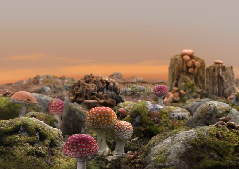 Fantasia feericamente mágica do mundo do cogumelo ilustração royalty free