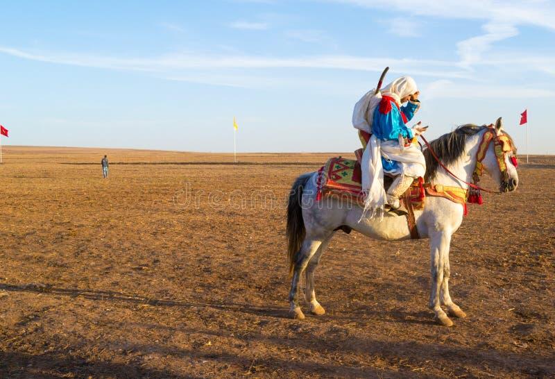 Fantasia horse rider checking his phone stock photos