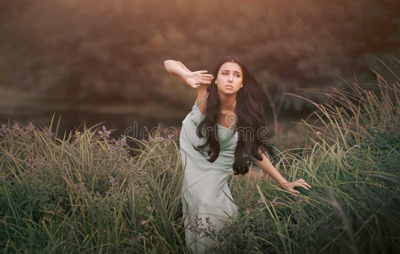Fantasie fairytale, mooie maar gealarmeerde vrouw - royalty-vrije stock fotografie