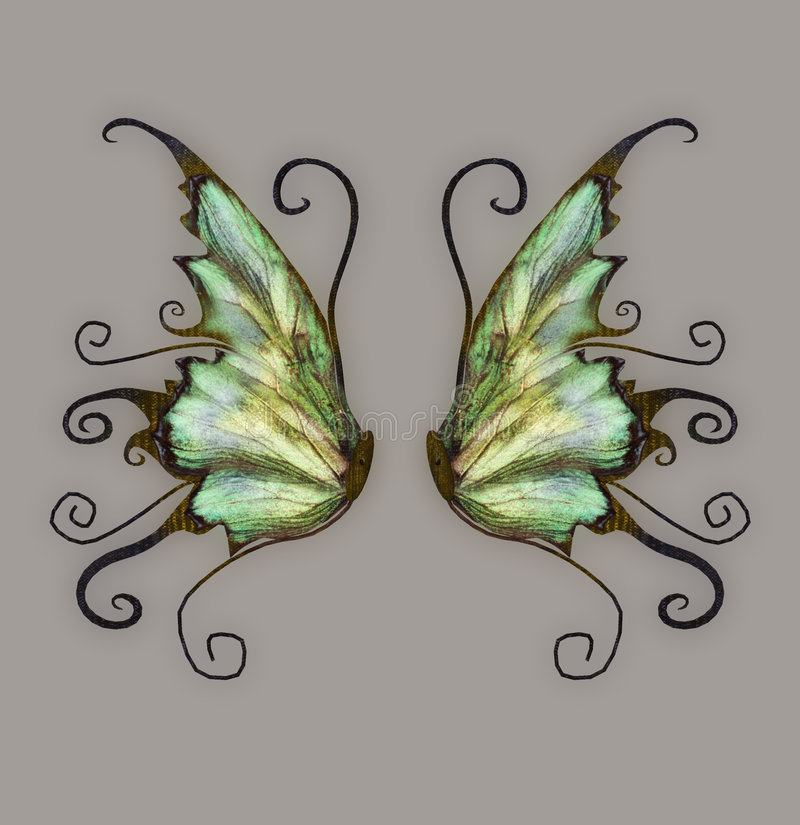 Fantasie-Flügel stock abbildung