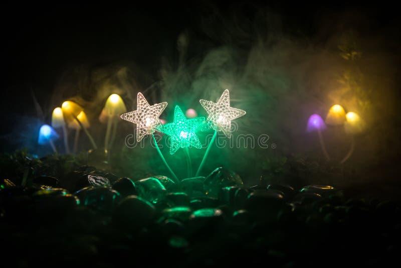 Fantasie Gloeiende Paddestoelen in geheimzinnigheid donker bosclose-up Mooi macroschot van magische die paddestoel of zielen in a stock fotografie