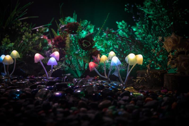 Fantasie Gloeiende Paddestoelen in geheimzinnigheid donker bosclose-up Mooi macroschot van magische die paddestoel of zielen in a stock afbeelding