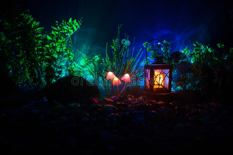 Fantasie Gloeiende Paddestoelen in geheimzinnigheid donker bosclose-up Mooi macroschot van magische die paddestoel of zielen in a stock foto's