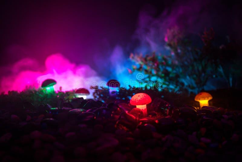 Fantasie Gloeiende Paddestoelen in geheimzinnigheid donker bosclose-up Mooi macroschot van magische die paddestoel of zielen in a royalty-vrije stock afbeelding