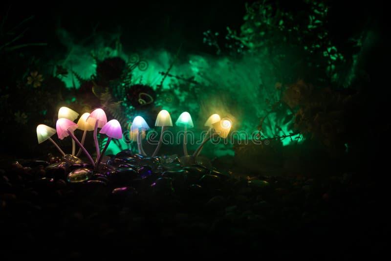 Fantasie Gloeiende Paddestoelen in geheimzinnigheid donker bosclose-up Mooi macroschot van magische die paddestoel of zielen in a royalty-vrije stock afbeeldingen