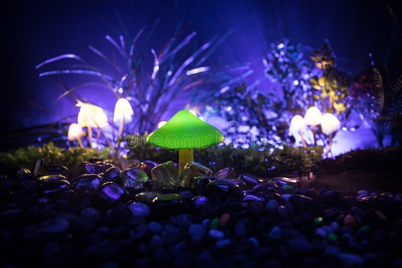 Fantasie Gloeiende Paddestoelen in geheimzinnigheid donker bosclose-up Mooi macroschot van magische die paddestoel of zielen in a stock afbeeldingen