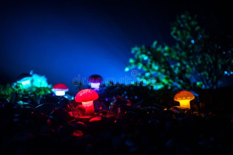 Fantasie Gloeiende Paddestoelen in geheimzinnigheid donker bosclose-up Mooi macroschot van magische die paddestoel of zielen in a royalty-vrije stock fotografie