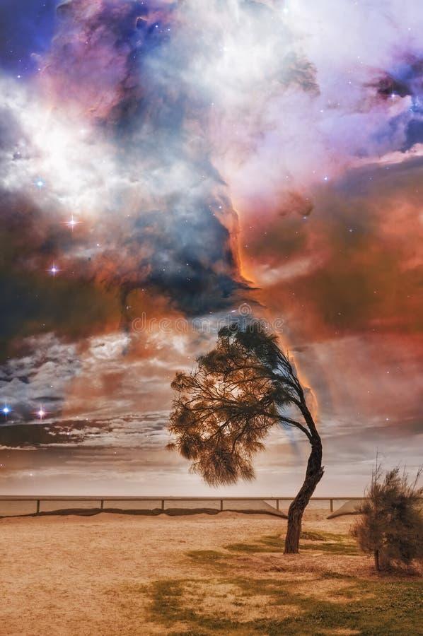 Fantasie vreemd landschap met gebogen boom en melkwegdraaikolk stock afbeelding