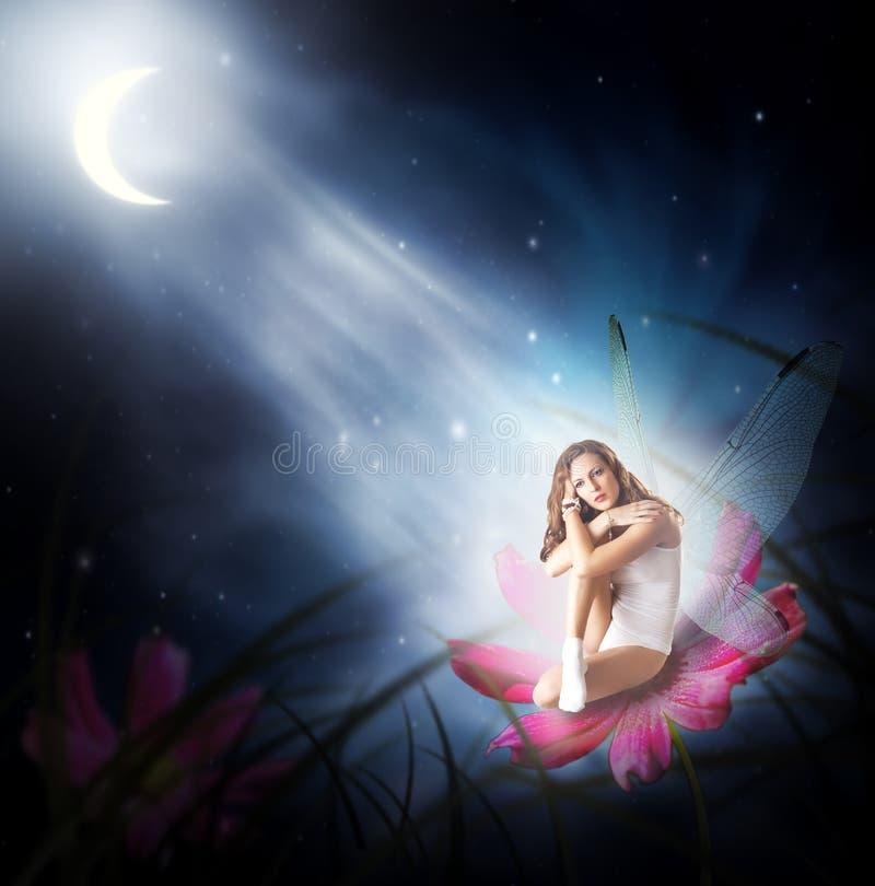 Fantasie. vrouw als fee met vleugels stock afbeeldingen