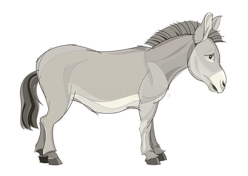 Fantasieillustration des netten inländischen Esels auf weißem Hintergrund Von Hand gezeichnetes Vektorbild lizenzfreie abbildung