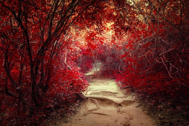 Fantasielandschap bij tropisch wildernisbos met tunnel royalty-vrije stock afbeelding