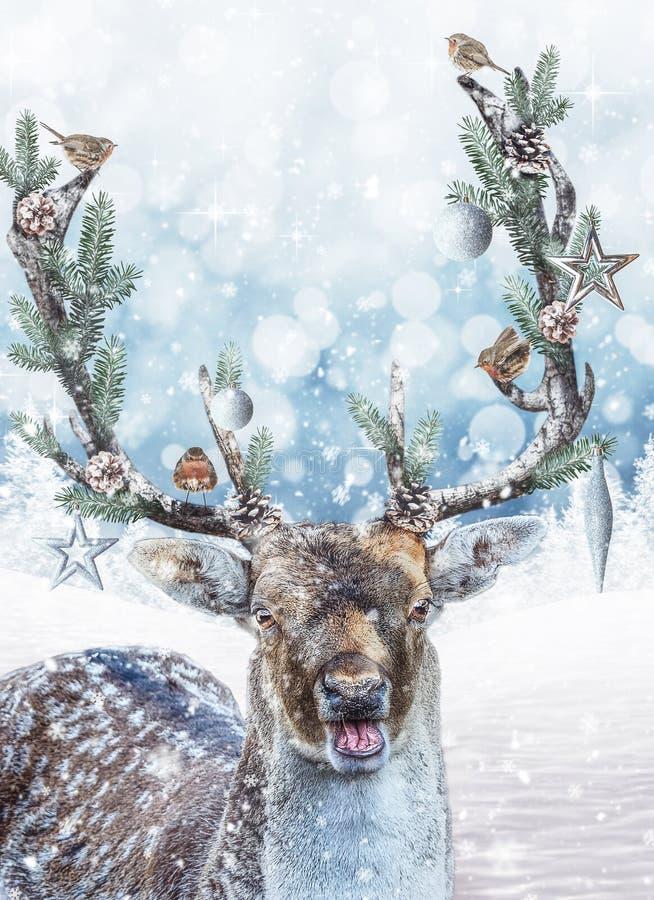 Fantasihjortar med dekorerade horn på kronhjort Plats för julferiefantasi stock illustrationer