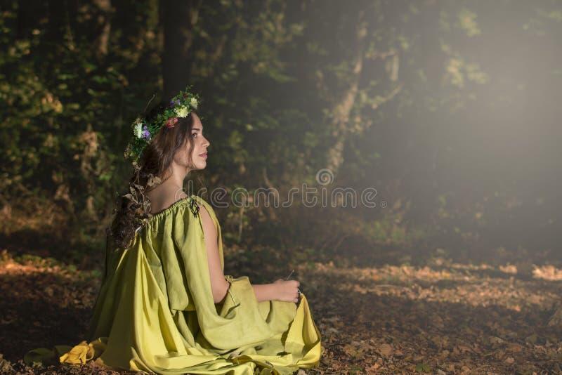 Fantasisagaskog royaltyfria foton