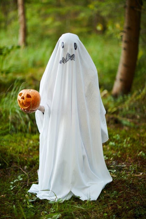 Fantasma de Halloween en los bosques fotos de archivo libres de regalías