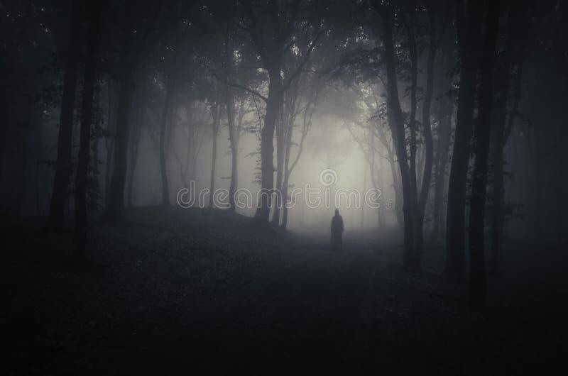 Fantasma in una foresta spettrale scura su Halloween immagini stock