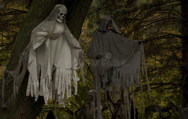 Fantasmas assustadores nas árvores fotografia de stock