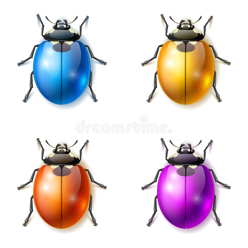 Download Fantastic beetles stock vector. Image of awesome, story - 39266987