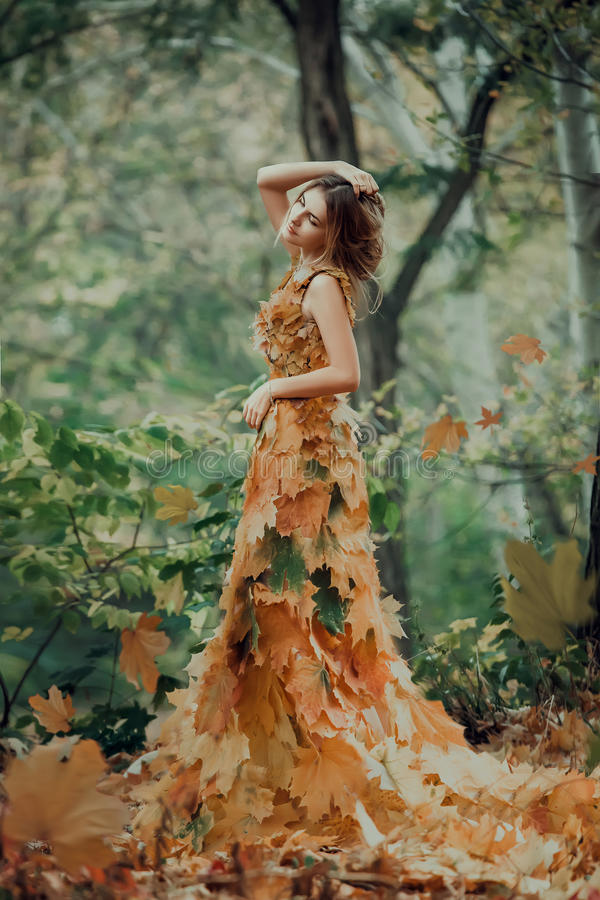Fantastic girl in the autumn forest. stock photography
