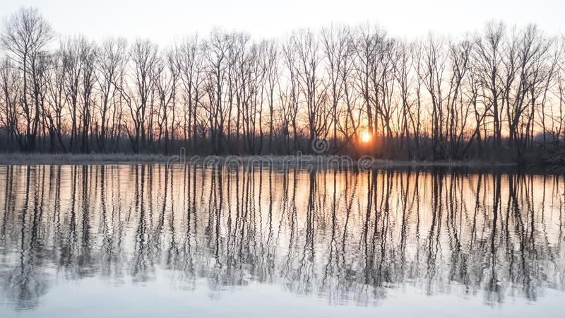 Fantastic landscape of the sun, river and trees. Spring at river bank. Bare trees reflected in the water. Peace and royalty free stock images