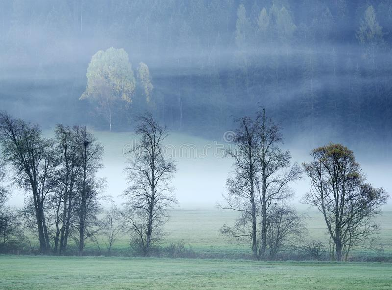 Dreamy landscape lost in thick fog, Valle di Casies. royalty free stock photos