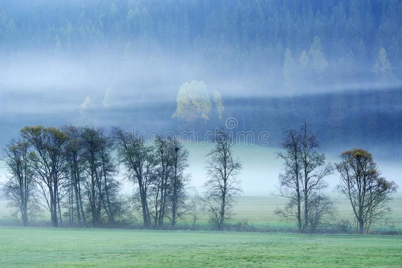 Dreamy landscape lost in thick fog, Valle di Casies. stock photo
