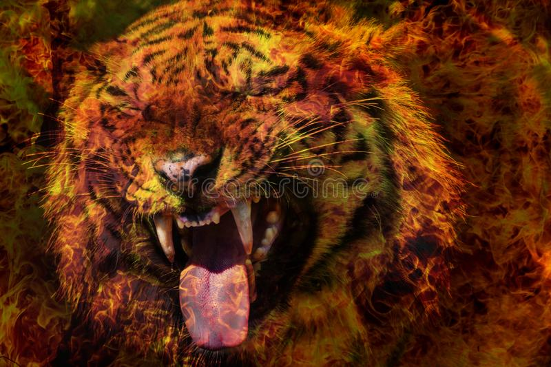 Fantastic portrait of a Bengal Siberian tiger on fire. Fire tiger of Chinese calendar. Postcard of the traditional Chinese New Ye. Ar, Year of fiery red tiger stock photo