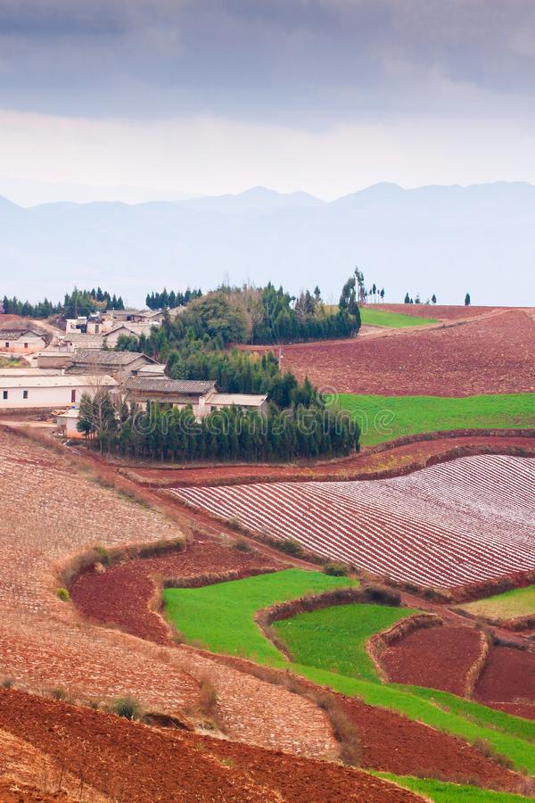 Fantastic scenery rural of south Yunnan, China. Beautiful wheat fields on the Red Land of Dongchuan. Old village and mountains royalty free stock images