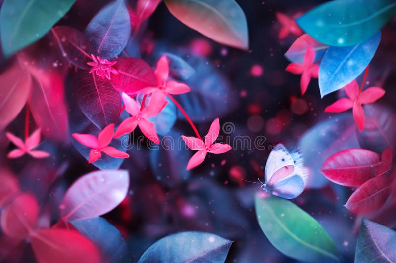 Fantastic summer tropical colorful butterfly, flowers and leaves. Bright natural spring summer ultra image. Ultraviolet, pink, red, blue and aquamarine color stock photo
