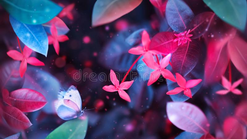 Fantastic summer tropical colorful butterfly, flowers and leaves. Bright natural spring summer ultra image. Ultraviolet, pink, red, blue and aquamarine color royalty free stock images