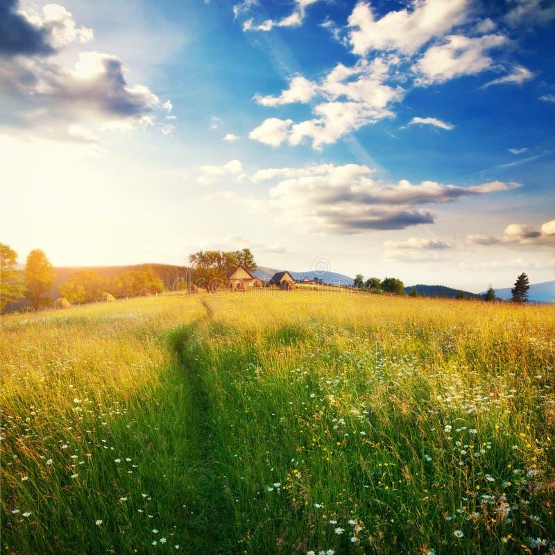 Fantastic sunny day is in mountain landscape. Carpathian, Ukrain. E, Europe stock images