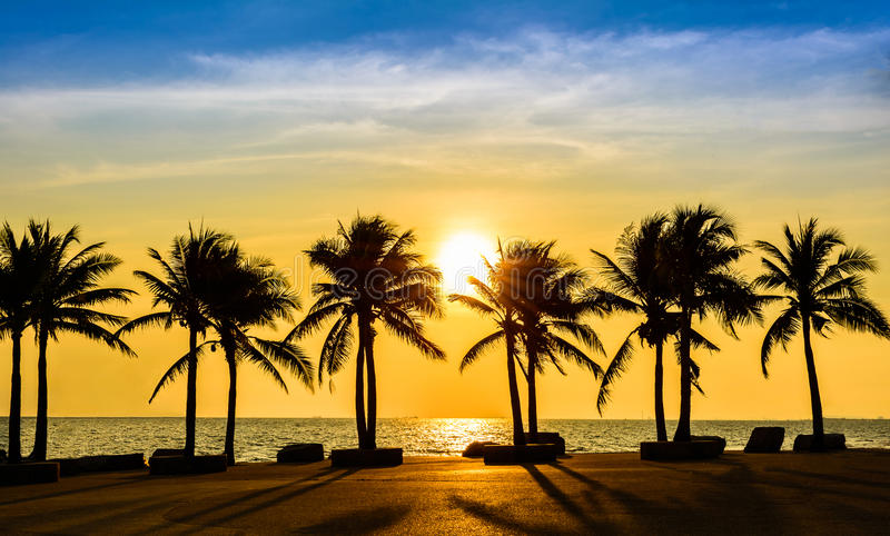 Fantastic tropical beach with palms at sunset stock photo