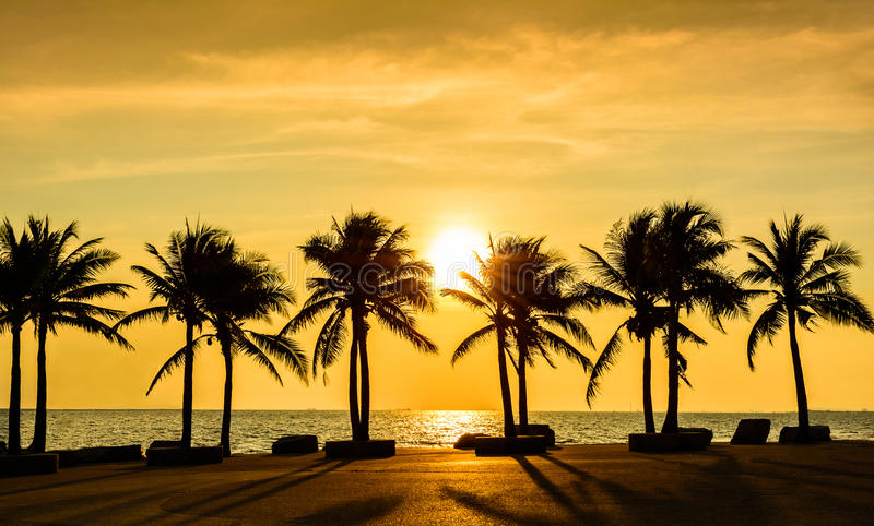Fantastic tropical beach with palms at sunset royalty free stock photos