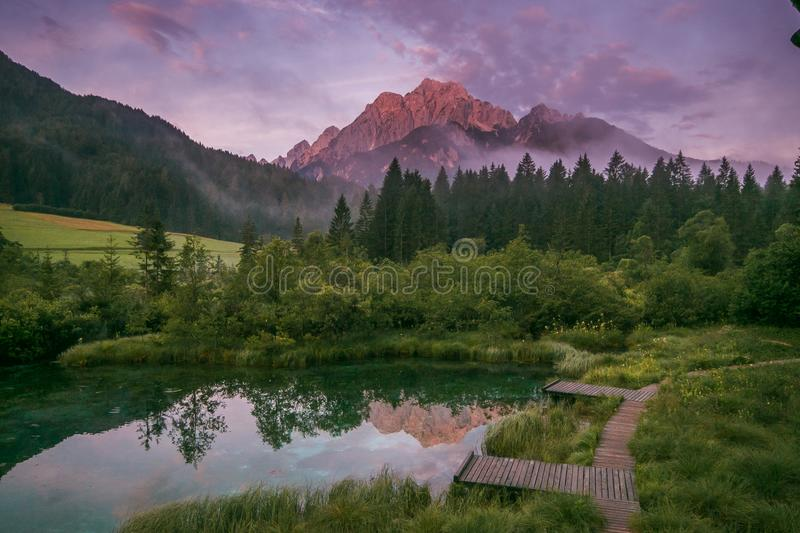 Fantastic view of Zelenci lake at romantic sunrise on summer morning stock photography