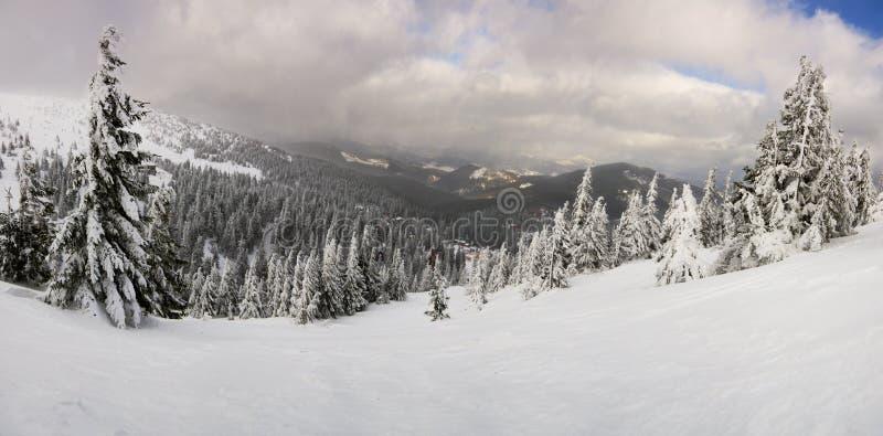 Fantastic winter landscape. Carpathian, Ukraine. Beauty world stock image