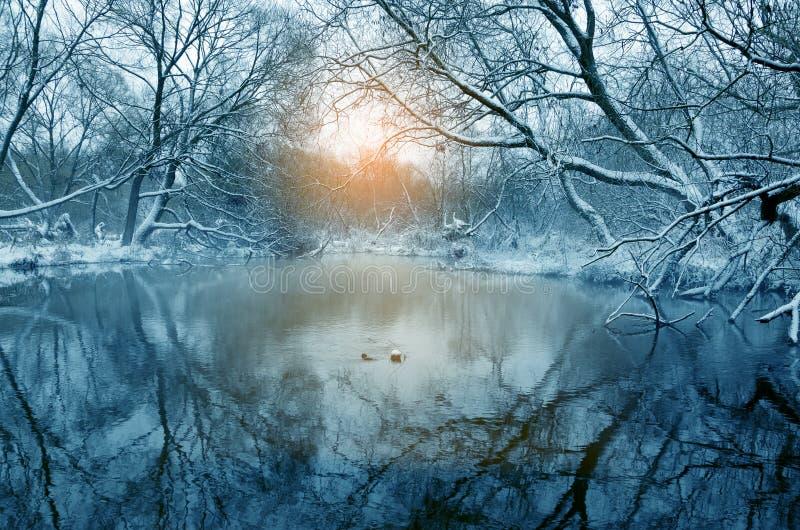 Fantastisch de winterlandschap met stromende rivier stock foto's