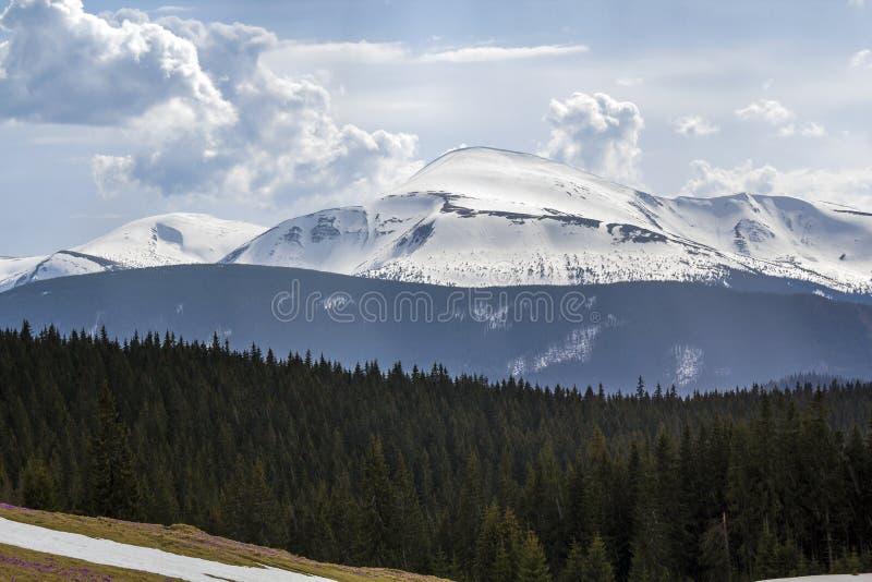 Fantastische Ansicht des Berges Hoverla in der Karpatengebirgsstrecke lizenzfreies stockbild