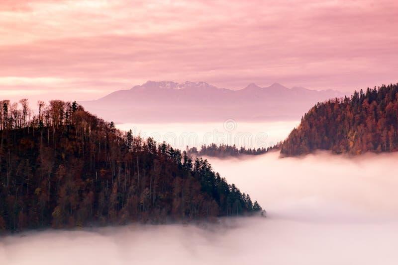 Fantastische Berglandschaft, surrealer rosa und purpurroter Himmel, das m lizenzfreie stockfotografie
