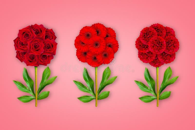 Fantastische Blume drei auf einem korallenroten Hintergrund Die Zusammensetzung von roten Rosen, von Gerberas und von Pfingstrose stockfotografie