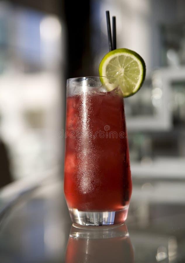 Fantastische Cocktails stockbild